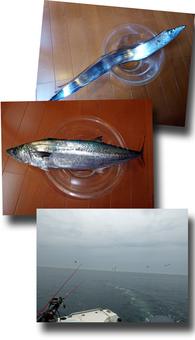 太刀魚釣り